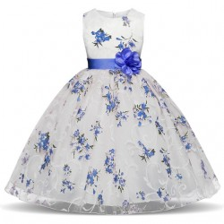 Girl Dress for events Blue Flower